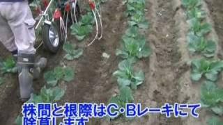 キュウホー キャベツ・ブロッコリー用管理機用除草機