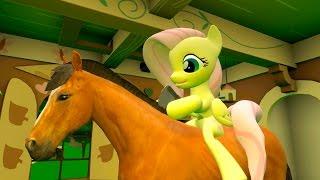 getlinkyoutube.com-Fluttershy and a Horse