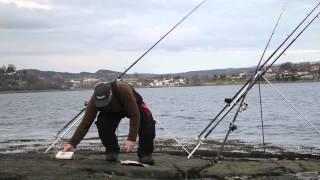 getlinkyoutube.com-Plaice fishing at Skarnsundet.