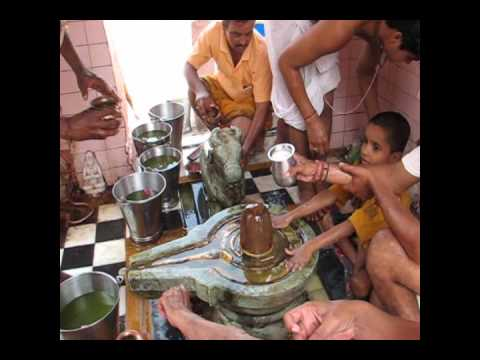Shiva Lingam cleaning Puja in Pushkar (480pp quality)