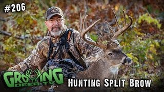 getlinkyoutube.com-Bow Hunting Whitetails: Finally Got Him - The Split Brow Buck!