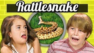 getlinkyoutube.com-KIDS vs. FOOD - RATTLESNAKE