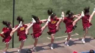 getlinkyoutube.com-早稲田大学チアリーディング部 5回チア曲(2014年春季・東大2回戦)