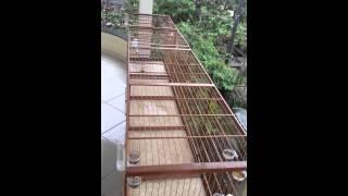 getlinkyoutube.com-Trinca ferro rapido - SEDEX mais de 25 por minuto