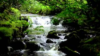 getlinkyoutube.com-100mins. Relaxing Classical Music