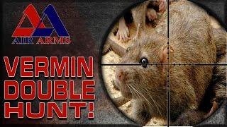 getlinkyoutube.com-Airgun Hunting: S510 Ultimate Sporter
