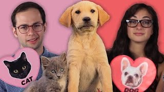 getlinkyoutube.com-Dog Facts Vs. Cat Facts