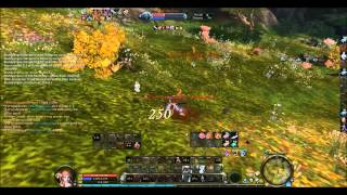 getlinkyoutube.com-Assassin PvP Aion 4 7 PvP ~ Jiggaz (Poolz)