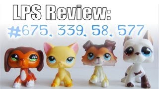 getlinkyoutube.com-LPS Review: Collie #58, Cat #339, Dachshund #675, Great Dane #577