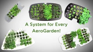 getlinkyoutube.com-AeroGarden Seed Starting Systems