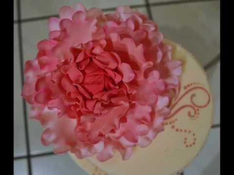 Pfingstrose/ Peony / Zuckerblume/ Step by Step / Torten Dekoration/ Blütenpaste