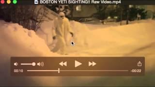 getlinkyoutube.com-BOSTON YETI SIGHTING!! Raw Video Breakdown