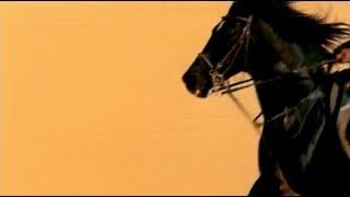 "getlinkyoutube.com-""زورو"" نجم الخيول فى السينما المصرية"