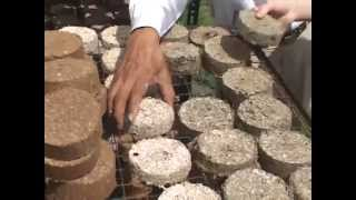 FOST briquette making process