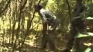 getlinkyoutube.com-Saving Sri Lanka's Elephants english documentary Part 1