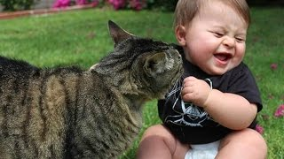 getlinkyoutube.com-Funny Babies Laughing at Cats Compilation 2016