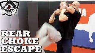 getlinkyoutube.com-How to Escape a Standing Rear Choke w/ Bas Rutten
