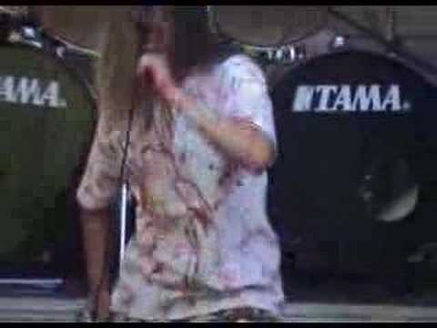 Maniacal Depressive Psychosis de Flaying Letra y Video