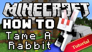 getlinkyoutube.com-Minecraft How To: Tame & Breed Bunny Rabbits!