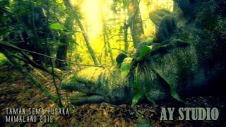 getlinkyoutube.com-MIMALAND 2015 - Jejak Dinosaur di Mimaland ditemui