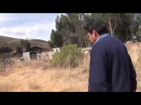 FANTASMAS REALES OCTUBRE 2014   VIDEOS DE FANTASMAS REALES OCTUBRE 2014  MIEDO TOTAL FANTASMAS