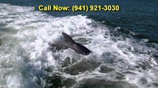 getlinkyoutube.com-Dolphin Cruise Sight Seeing Cruise Siesta Key Water Sports