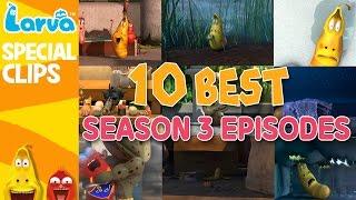 getlinkyoutube.com-[Official] Best Larva Episodes - Season 3 - Top 10