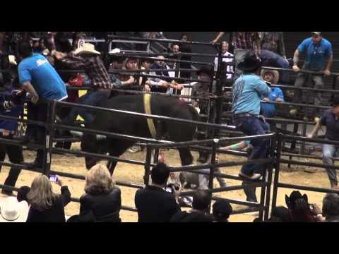 Accidente en el jaripeo Villa park il toro de rancho los terribles de Cristian Juares