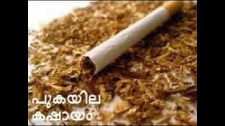 getlinkyoutube.com-pukayila kashayam- പുകയില  കഷായം