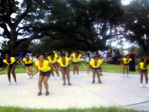 Theta Upsilon Chapter of Sigma Gamma Rho Pretty Poodles