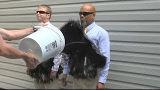 getlinkyoutube.com-The SECOND Official Ultra-Ever Dry Video - Superhydrophobic coating - Repels almost any liquid!