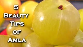 getlinkyoutube.com-5 Indian Gooseberry Benefits For Skin and Hair By Sonia Goyal @ ekunji.com