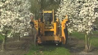 getlinkyoutube.com-Bruns Pflanzen: Bäume auf Achse - Wenn grüne Riesen reisen
