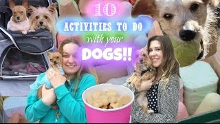 getlinkyoutube.com-10 Fun Activities to do with your Dogs!! + Winter Essentials + Homemade Dog Stew and Treats!!!