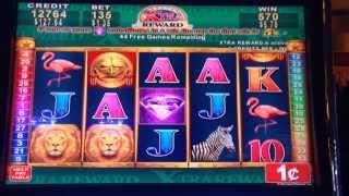 getlinkyoutube.com-Great Africa - Konami Slot Machine Bonus Win - 50 Free Games