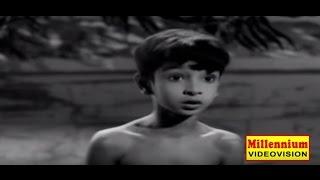 Malayalam Movie Song   Katturumbinte   Porter Kunjali   Malayalam Film Song