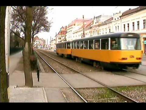 Tramvaie in Oradea