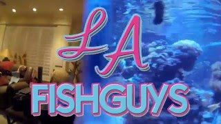 Setting up my 180 gallon Glass Coral Reef Tank, LA Fishguys Episode 151 part 1