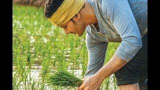 Maharshi Best Whatsapp Status// Prince Mahesh Babu And Pooja Hedje New Telugu Movie//About Rythu//