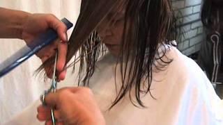 getlinkyoutube.com-Mid-Length Custom Modern Angled Bob featuring Sharon Sovinski.wmv