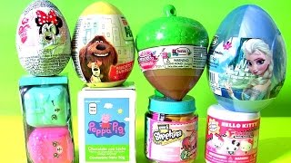 getlinkyoutube.com-Secret Life of Pets Toys Surprises Peppa Pig Shopkins CHEF Disney Frozen Elsa Funtoyscollector