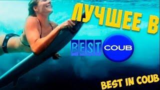 getlinkyoutube.com-Смешные ПРИКОЛЫ 2015 COUB & VINE # 64 Funny video Best fails Compilation Подборка смешных видео
