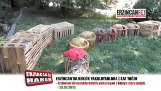 Erzincan'da Kekliklere Tuzak Kuran 7 Kişiye Ceza Yağdı