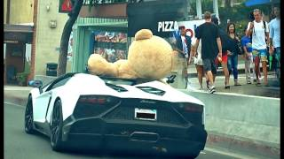 getlinkyoutube.com-DRIVING LAMBORGHINI WITH HUGE BEAR!!! HOW WILL PEOPLE REACT TO THIS?