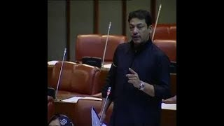 Syed Faisal Raza Abidi Last Speech In The Senate