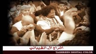 """getlinkyoutube.com-زفة  """"شي ثاني """" - عرس الفنان هاني الشيباني / غناء """"مجموعة من نجوم الغناء في اليمن """""""