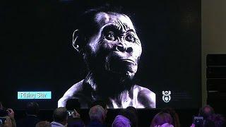 Científicos descubrieron en Sudáfrica un nuevo antepasado del hombre: el Homo naledi