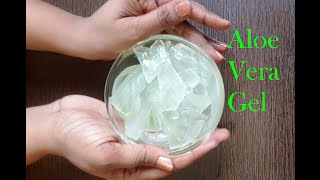 getlinkyoutube.com-How to make Aloe vera gel at home