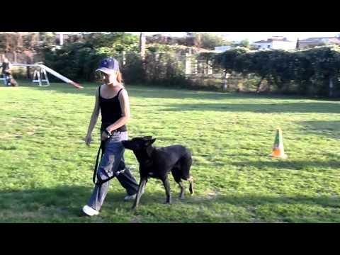 2011 07 27 Tanga & Eléonore - Marche aux pieds