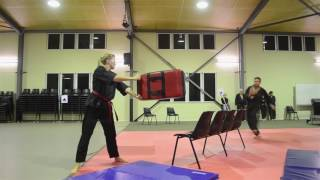Hapkido Hosinsul Primer